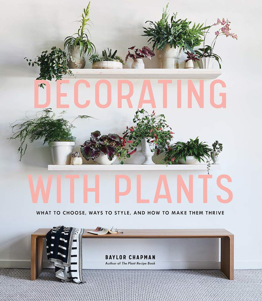 Decorating with Plants: What to Choose, Ways to Style, and How to Make Them Thrive
