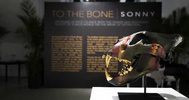 Sonny 7 620x330 - Event Recap: To The Bone Pop-Up Exhibit by Sonny May 17-20, 2018 #ToTheBoneProject