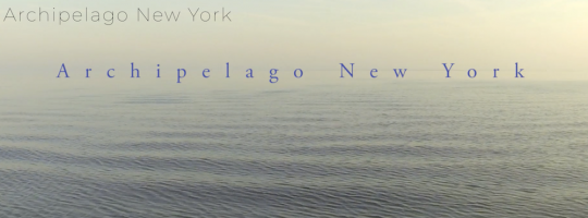 Screen Shot 2018 06 22 at 10.28.50 AM 540x200 - Book Release-Archipelago New York @ArchipelagoNY @Schifferbooks