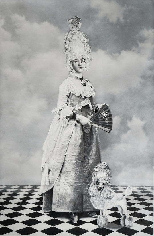 Zoe Byland Lady and Poodle Acrylic and airbrush on canvas 45  x 29.5  540x827 - Corey Helford Gallery presents The Influence of Fellini: A Surreal 100th Birthday Celebration group exhibit January 25 - February 29, 2020 @coreyhelford