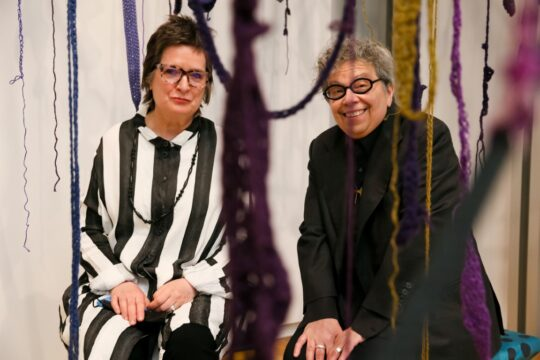 Carrie Moyer Sheila Pepe 540x360 - Event Recap: Museum of Arts and Design Preview of New Exhibitions @MADmuseum