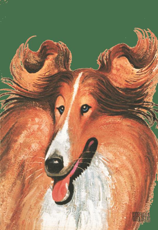 AH Lassie Transparent 540x786 - Al Hirschfeld Foundation presents a new online exhibition: THE DOG SHOW: HOUNDS BY HIRSCHFELD