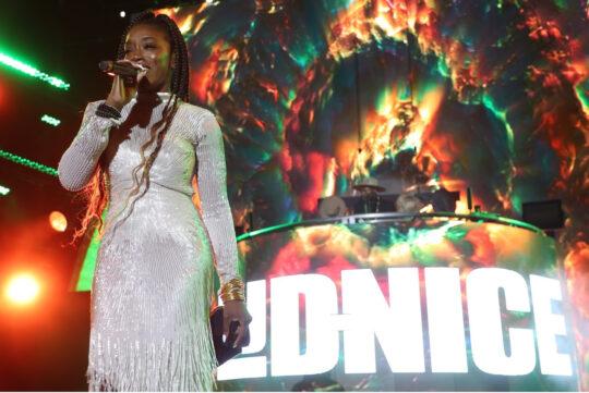 unnamed23 540x361 - Event Recap: Legendary DJ D-Nice brings Club Quarantine to New York City! @bricbrooklyn @dnice